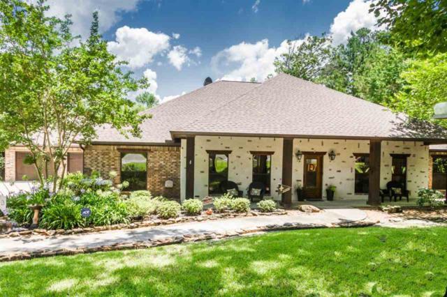 146 Beechwood, Lumberton, TX 77657 (MLS #205095) :: TEAM Dayna Simmons
