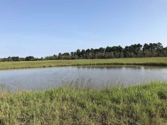 01 Atlantic Rd., Sour Lake, TX 77659 (MLS #205187) :: TEAM Dayna Simmons
