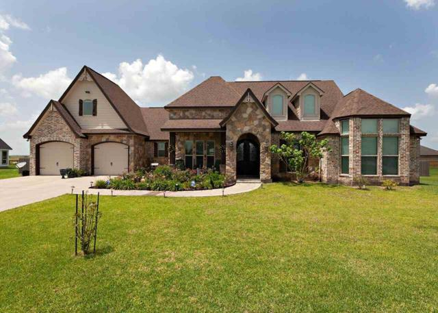 14940 Michelle Lane, China, TX 77713 (MLS #205298) :: TEAM Dayna Simmons