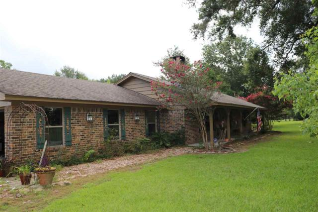 15445 Wilkins Rd., Sour Lake, TX 77659 (MLS #205760) :: TEAM Dayna Simmons