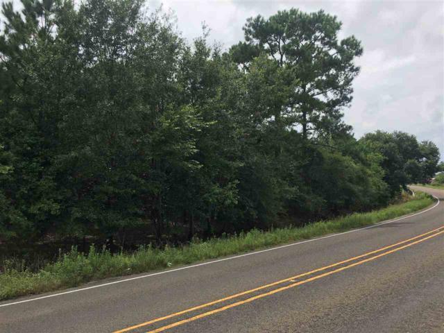 +/- 5.5 acres Fm 408, Orange, TX 77630 (MLS #205778) :: TEAM Dayna Simmons