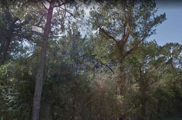 0000 Wilkins Ranch Rd, Sour Lake, TX 77659 (MLS #207678) :: TEAM Dayna Simmons