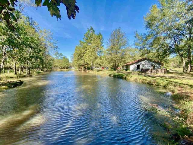 1200 Sweetwater, Vidor, TX 77662 (MLS #208350) :: TEAM Dayna Simmons