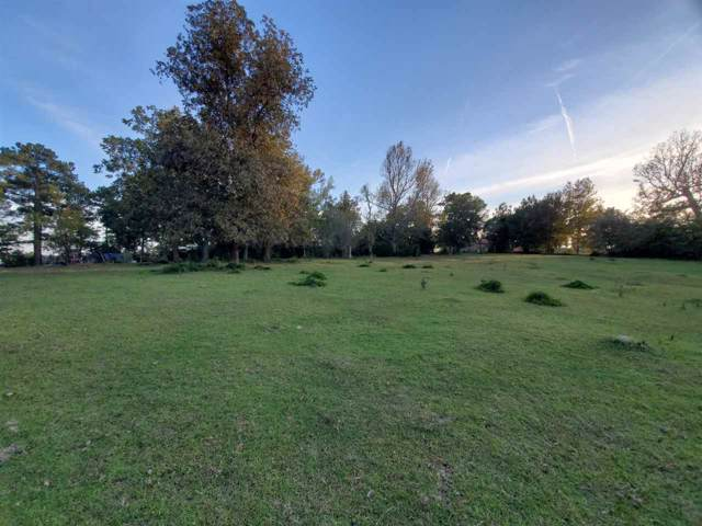 250 County Road 2153, Woodville, TX 75979 (MLS #208414) :: TEAM Dayna Simmons
