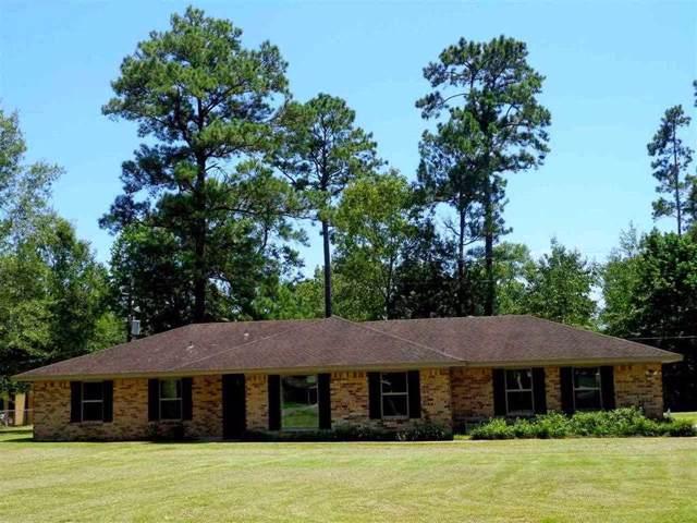 13365 Saddlewood, Beaumont, TX 77713 (MLS #208919) :: TEAM Dayna Simmons