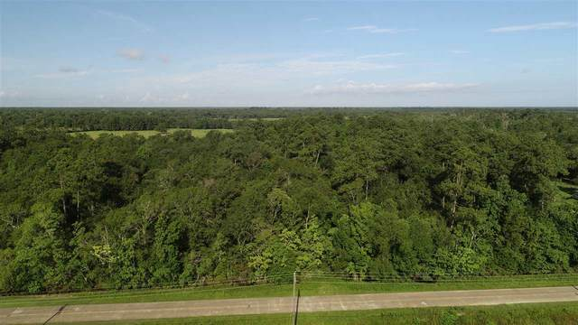 00 Old Sour Lake Rd., Sour Lake, TX 77659 (MLS #210086) :: TEAM Dayna Simmons