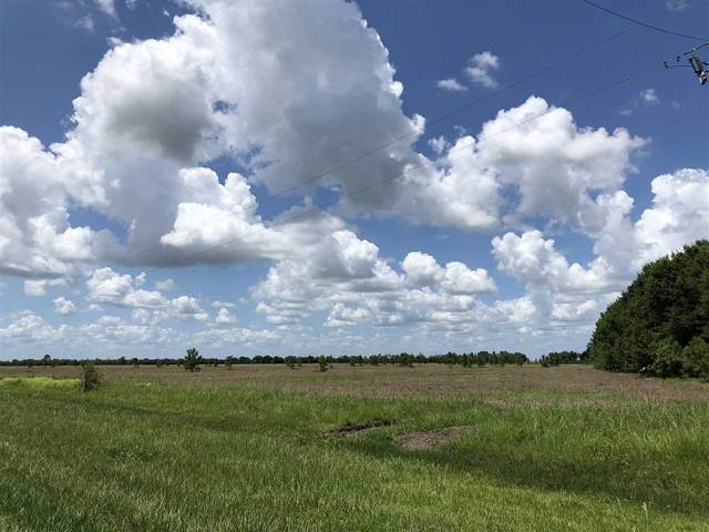 27386 Hwy 365, Beaumont, TX 77705 (MLS #210158) :: TEAM Dayna Simmons
