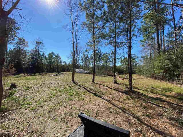 4545 Bob White Rd, Silsbee, TX 77656 (MLS #210237) :: TEAM Dayna Simmons