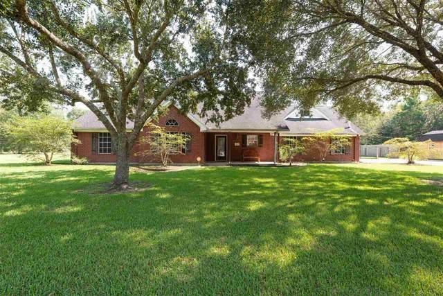 1703 Sheba Place, Vidor, TX 77662 (MLS #211218) :: TEAM Dayna Simmons
