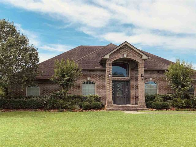 9195 Parkwood Dr., Orange, TX 77630 (MLS #212481) :: TEAM Dayna Simmons