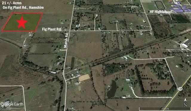 0000 Fig Plant Road, Hamshire, TX 77627 (MLS #213263) :: TEAM Dayna Simmons