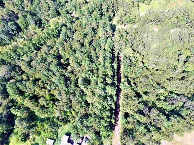 00 Whitetail Forest Rd., Kountze, TX 77625 (MLS #214422) :: Triangle Real Estate