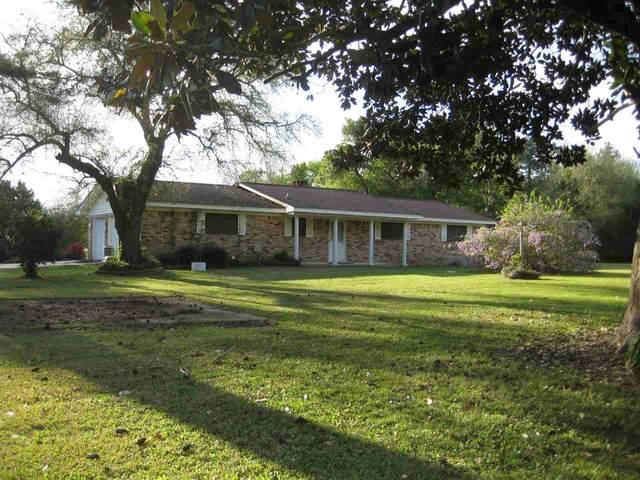905 Cr 1920, Warren, TX 77664 (MLS #215128) :: TEAM Dayna Simmons