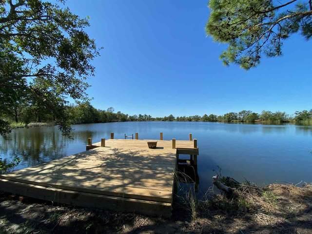 440 Lake, Bridge City, TX 77611 (MLS #215303) :: TEAM Dayna Simmons