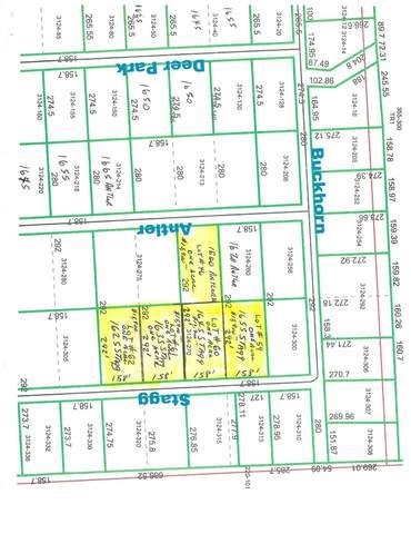 1645 Stagg Dr., Vidor, TX 77662 (MLS #216068) :: TEAM Dayna Simmons