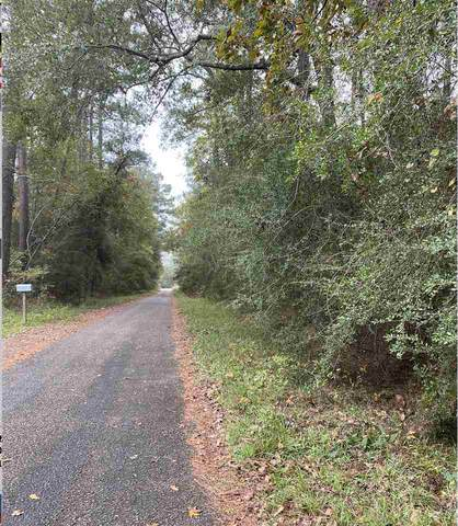 Young, Vidor, TX 77662 (MLS #216079) :: Triangle Real Estate