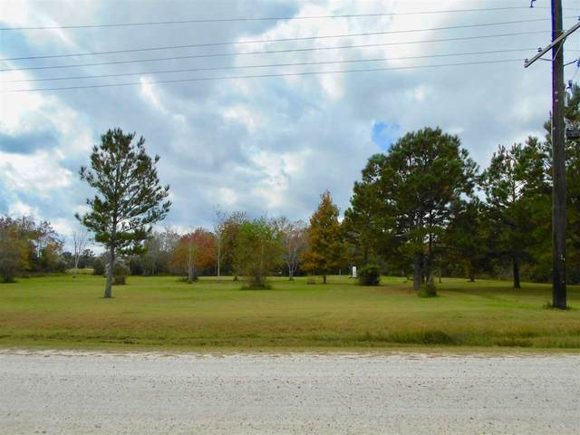 10965 Old Batson Saratoga Rd, Sour Lake, TX 77659 (MLS #216208) :: TEAM Dayna Simmons