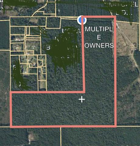 6176 Cherry Hill Rd, Kountze, TX 77625 (MLS #216438) :: TEAM Dayna Simmons