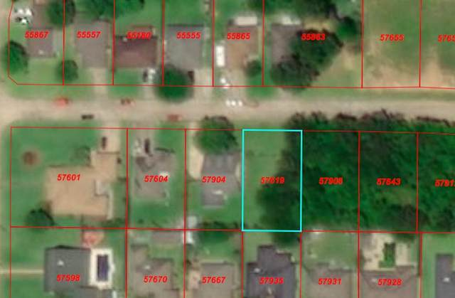 TBD Dundee Dr, Vidor, TX 77662 (MLS #216515) :: Triangle Real Estate