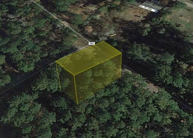 000 County Road 362, Brookeland, TX 75931 (MLS #216756) :: Triangle Real Estate