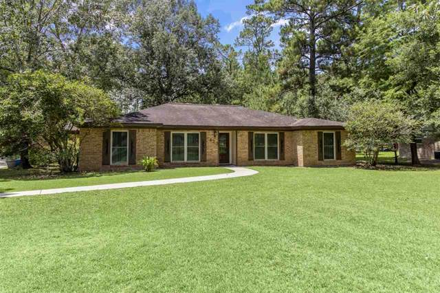 423 Pinemont Dr., Sour Lake, TX 77659 (MLS #217227) :: TEAM Dayna Simmons