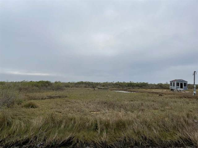 Lots 168 & 169 Van Sant, Gilchrist, TX 77617 (MLS #217435) :: Triangle Real Estate