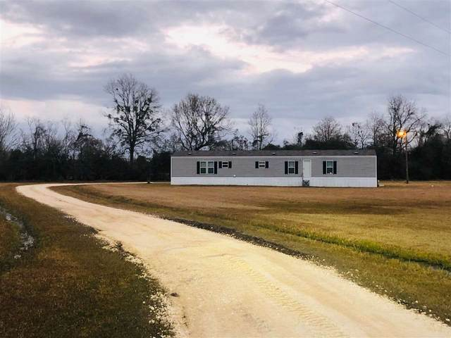5445 FM 1004 W, Kirbyville, TX 75956 (MLS #217442) :: Triangle Real Estate