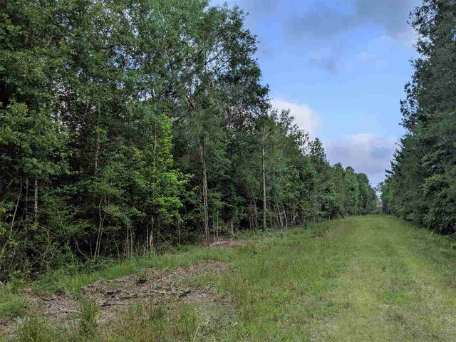 000 Whispering Pines Drive, Lumberton, TX 77657 (MLS #217466) :: Triangle Real Estate