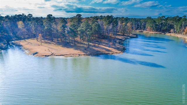 359 County Road 451, Broaddus, TX 75929 (MLS #217488) :: Triangle Real Estate