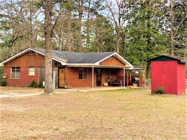 480 Ivanhoe Drive W, Woodville, TX 75979 (MLS #217857) :: Triangle Real Estate