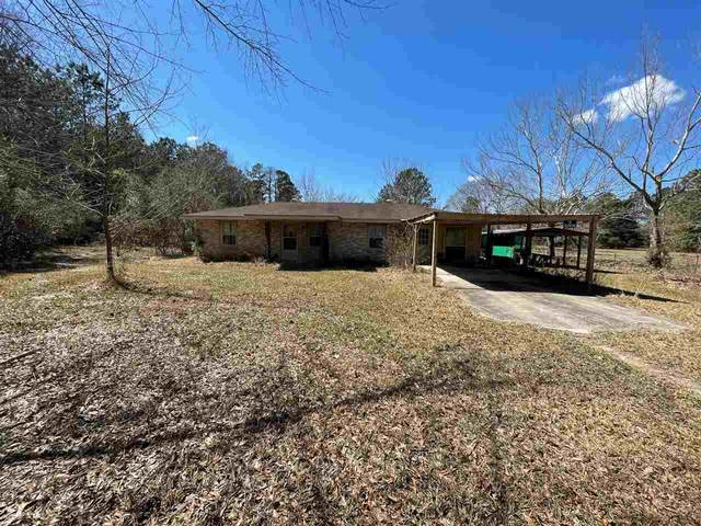 9192 Bussey Rd., Silsbee, TX 77656 (MLS #218333) :: Triangle Real Estate