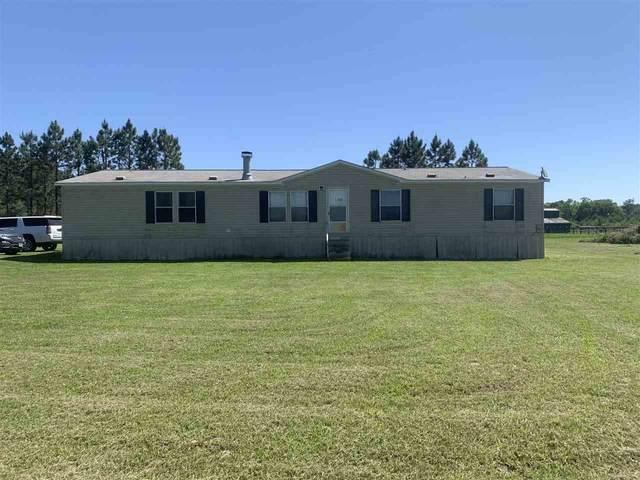 15914 G W Jones Sr. Road, Sour Lake, TX 77659 (MLS #219137) :: TEAM Dayna Simmons