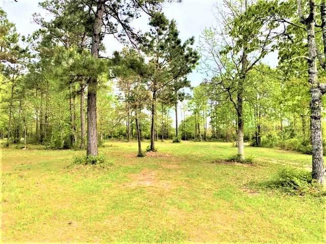 334 Pr 8385, Hillister, TX 77624 (MLS #219163) :: Triangle Real Estate