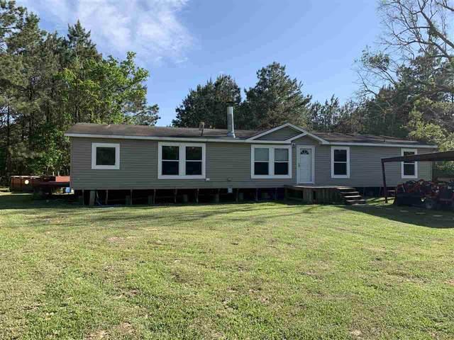 3149 Timber Hollow, Kountze, TX 77625 (MLS #219174) :: TEAM Dayna Simmons