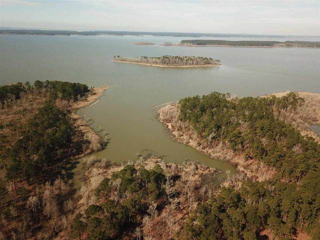 00 Pr 6026, Brookeland, TX 75931 (MLS #219179) :: TEAM Dayna Simmons