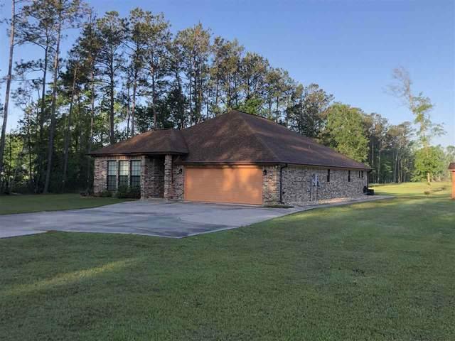 3350 S Teal Road, Orange, TX 77632 (MLS #219182) :: Triangle Real Estate