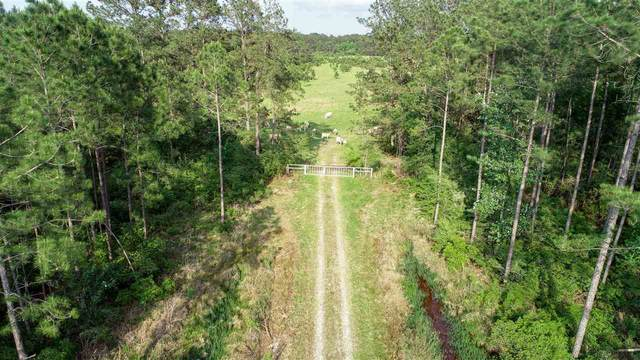 000 Old Beaumont Rd, Sour Lake, TX 77659 (MLS #219854) :: Triangle Real Estate