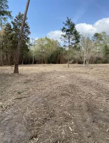 10825 Wingfield Drive, Lumberton, TX 77657 (MLS #219874) :: Triangle Real Estate