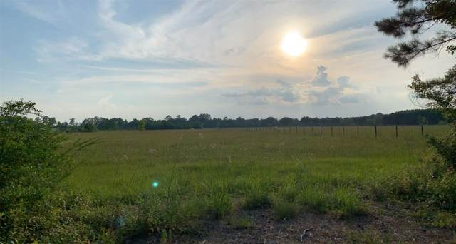 000 Gw Jones Rd, Sour Lake, TX 77659 (MLS #220696) :: Triangle Real Estate