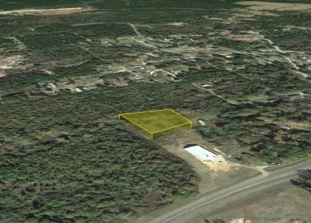 0 King Chapel Rd, Newton, TX 75966 (MLS #220895) :: Triangle Real Estate