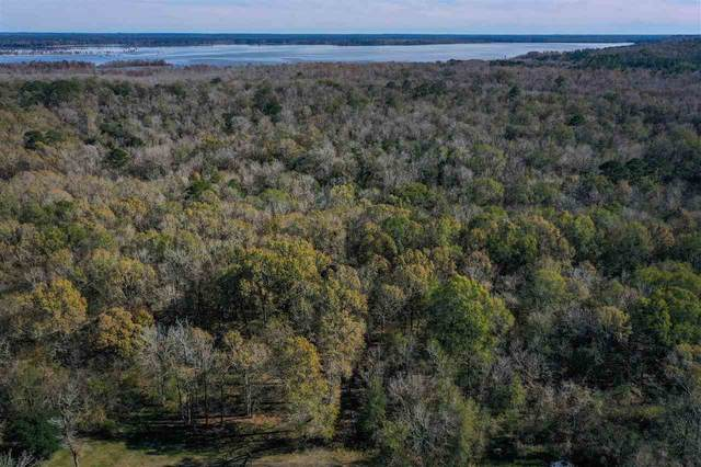TBD Cr 4115, Woodville, TX 75979 (MLS #220921) :: Triangle Real Estate