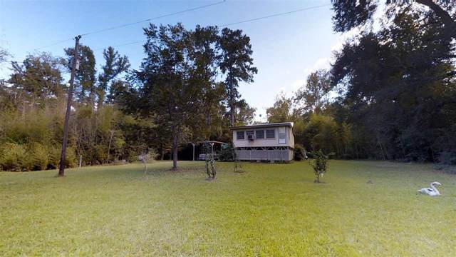 615 County Road 3709, Colmesneil, TX 75938 (MLS #220924) :: Triangle Real Estate