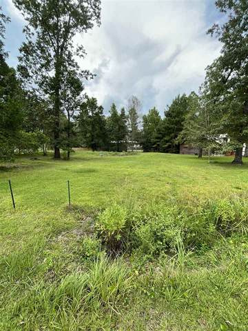 204 Pinemont, Sour Lake, TX 77659 (MLS #222487) :: TEAM Dayna Simmons