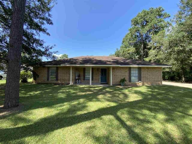 195 Oldbury Rd, Vidor, TX 77662 (MLS #222529) :: TEAM Dayna Simmons