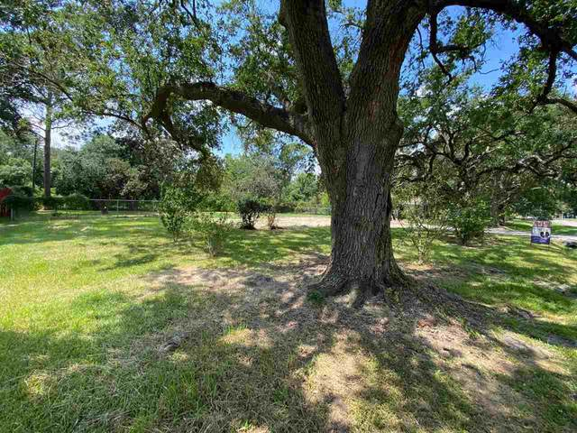 3201 Canal, Groves, TX 77619 (MLS #222742) :: TEAM Dayna Simmons