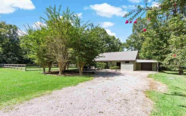 860 Shady Lane, Sour Lake, TX 77659 (MLS #222985) :: TEAM Dayna Simmons