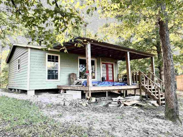197 County Road 3150, Colmesneil, TX 75938 (MLS #223273) :: Triangle Real Estate
