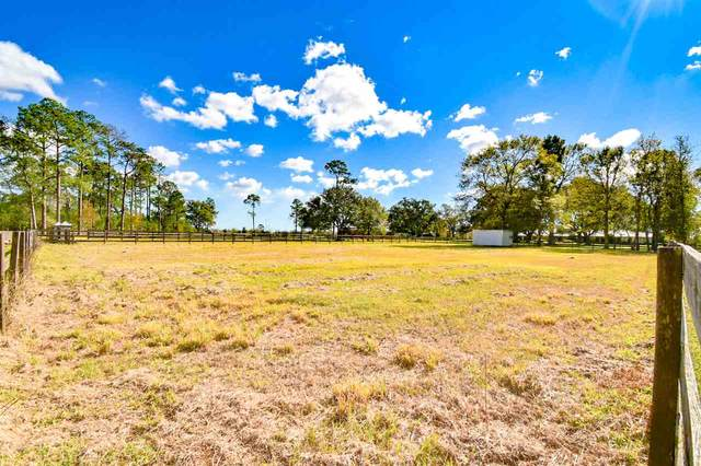 7025 Oleander Ave, Fannett, TX 77705 (MLS #223653) :: Triangle Real Estate