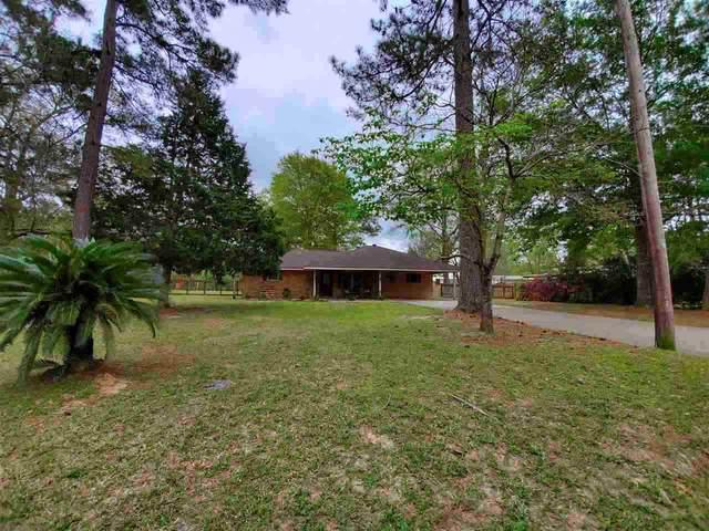 5659 Ariola Lane, Lumberton, TX 77657 (MLS #223968) :: Triangle Real Estate