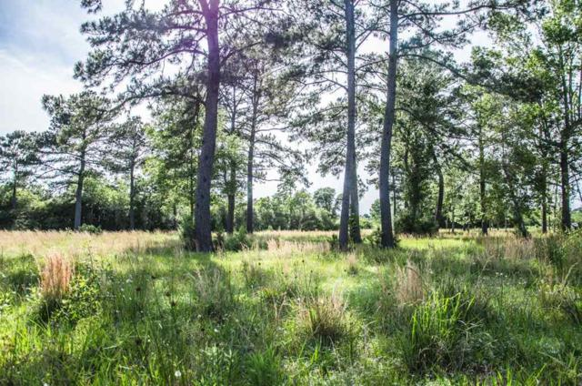 1100 Roll Road, Beaumont, TX 77713 (MLS #195330) :: TEAM Dayna Simmons